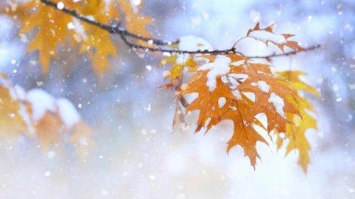 Wetter-Vorhersage aktuell: 25 Grad, Orkan-Böen, Schnee! Auf Hitze-Hammer folgt Kälte-Schock