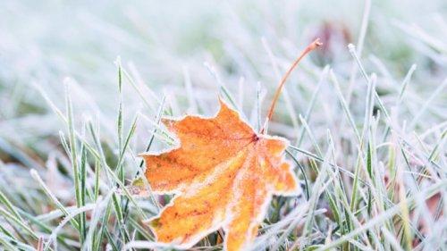 Wetter in Nürnberg aktuell: So frostig wird es am Samstag