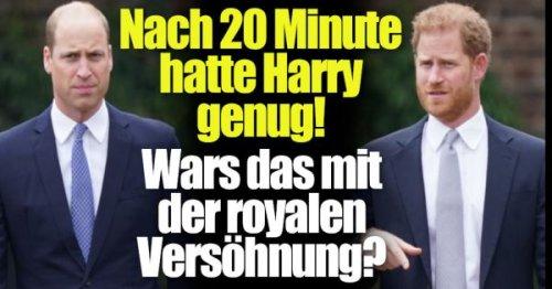 Prinz Harry und Prinz William: Nach 20 Minuten war er weg! Harry kann Trennung kaum erwarten