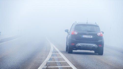Mannheim Wetter heute: Wetterdienst warnt vor Nebel! Temperaturen und Niederschlag im Tagesverlauf