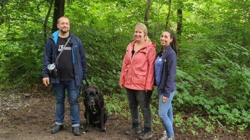 """""""Der Hundeprofi - Rütters Team"""": Wiederholung von Episode 2, Staffel 2 online und im TV"""