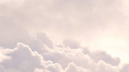 Biowetter Region Hamburg heute: Belastung durch Pollen und Wetterwechsel aktuell am 28.07.2021