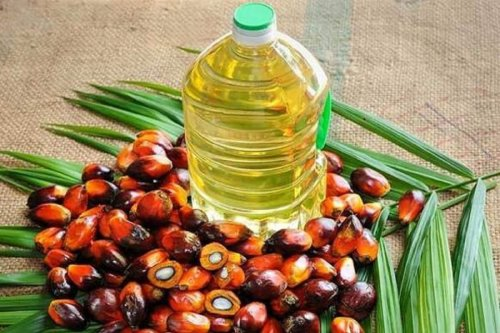 Cooking Oil May Become Cheaper Soon