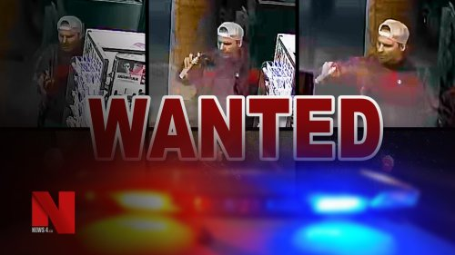 Investigators looking for spray-painting suspect