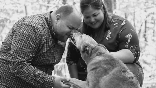 End-of-life photography for pets