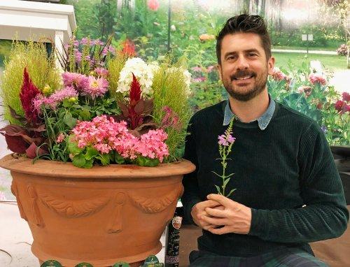 What exactly is Barakura-style gardening – and how do you do it?