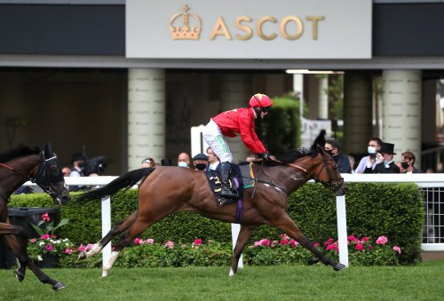 Princess aims for new heights in Oak Tree Stakes