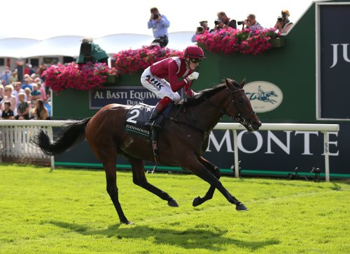 Mishriff set to miss Breeders' Cup
