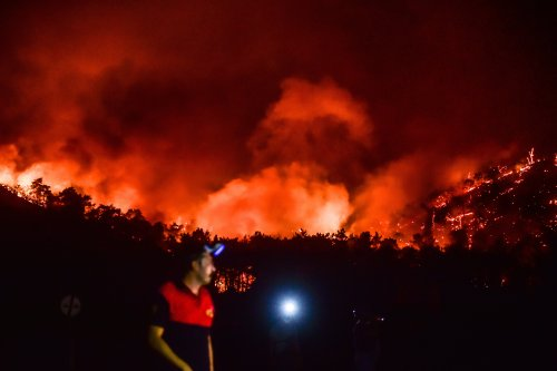 Turkish president faces mounting criticism over deadly wildfires