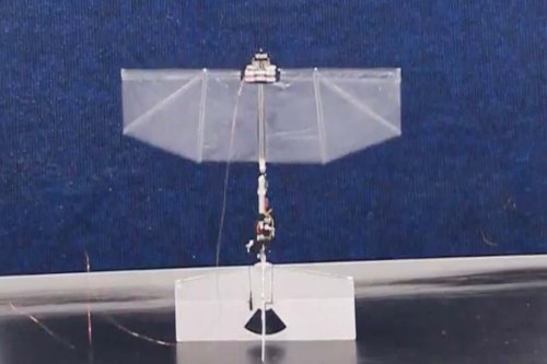 Flapping drone can fly, dart and hover like a bird