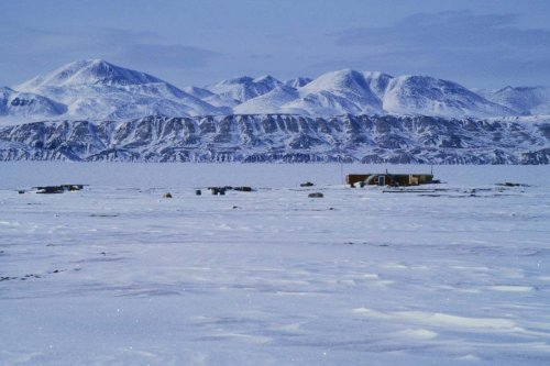Climate change linked to risk of viruses jumping species in the Arctic