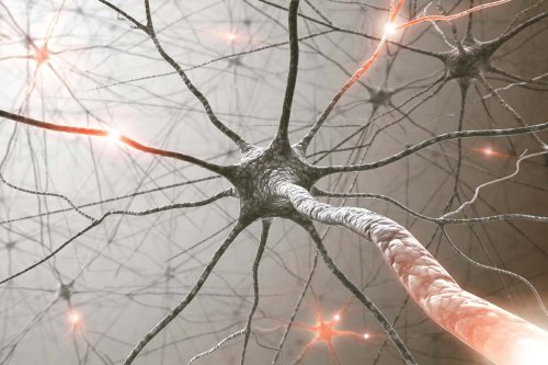 Artificial nervous system senses light and learns to catch like humans