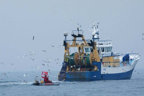 Inside the fight to stop destructive fishing in marine protected areas