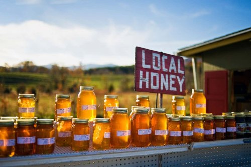 Does local honey really work as a hay fever cure?
