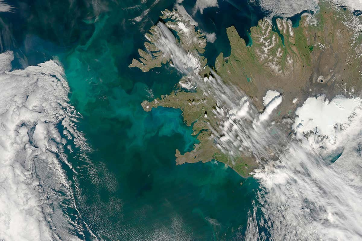 Controversial geoengineering scheme will dump iron in the sea