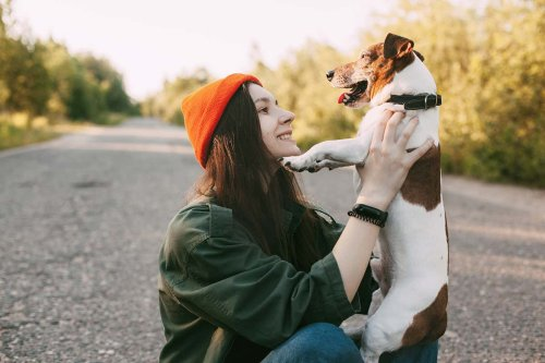 Your dog may not like you as much as you think it does