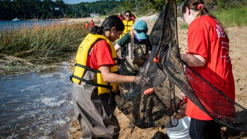 LI students 'get their hands dirty' collecting data on local rivers