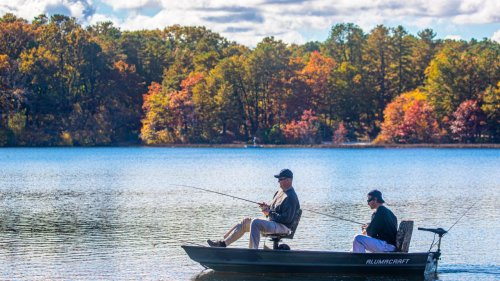LI spots packed to the gills with freshwater fish
