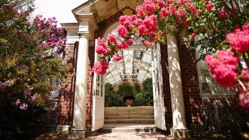 Botanical gardens, arboretums on LI to explore
