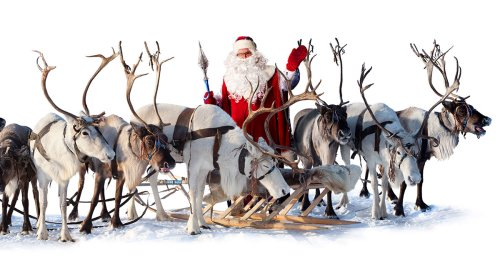 Sleigh-pulling licence changes announced to tackle reindeer shortage