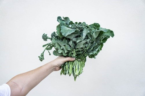 6 Healthy Foods You're Probably Not Eating - News Web Zone