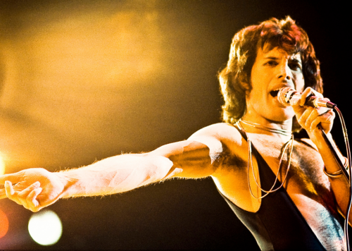 Freddie Mercury: The life story you may not know