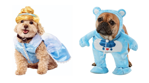10 ridiculously cute dog Halloween costumes