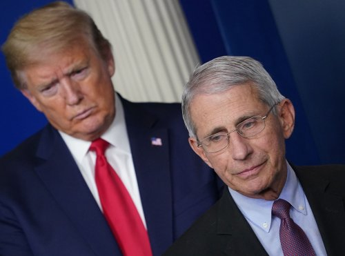 As Fauci debunks Trump's death toll retweet, here are 4 more times he's contradicted president on coronavirus