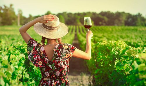You can get paid $120k a year to drink wine and live in California rent-free
