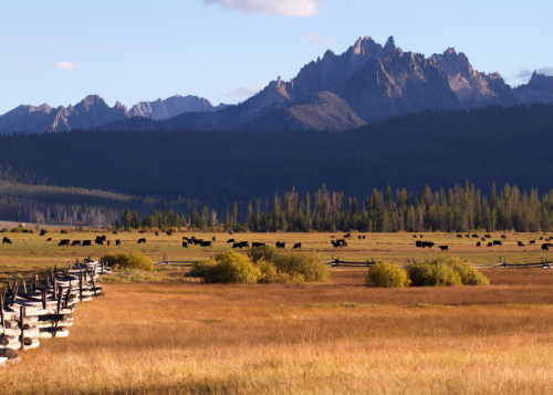 These are the 50 most rural counties in America