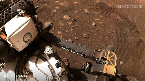 Telecommuting to Mars