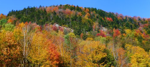 State of the Adirondacks: Increased usage during pandemic spotlights need for continued conservation efforts