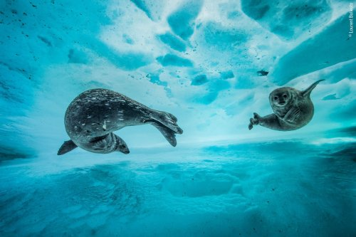 Fifteen photos that'll remind you why you love our planet