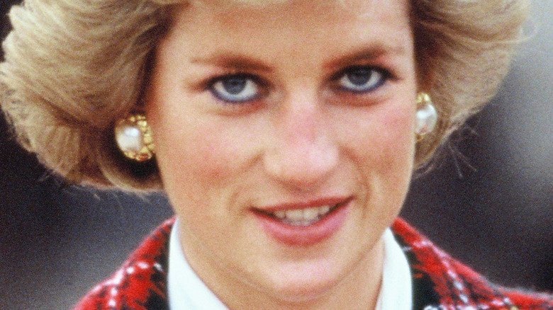 Here's Why Twitter Is Divided On The Princess Diana Statue