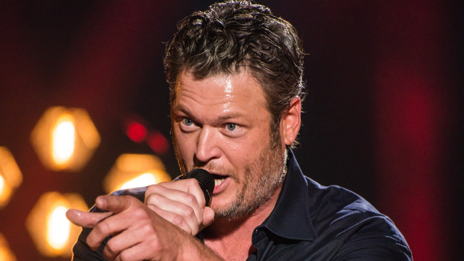 Stars Who Can't Stand Blake Shelton