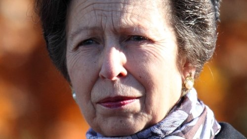 Will Princess Anne Take Over Prince Harry And Prince Philip's Military Patronages?