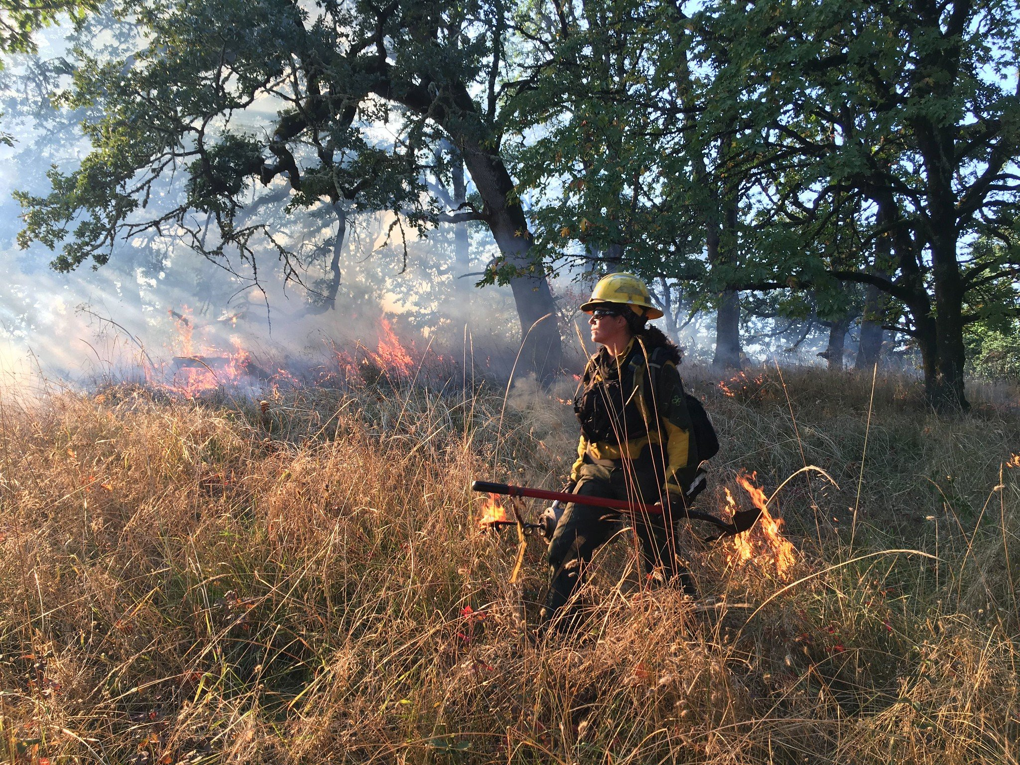 Updates From the National Interagency Fire Center