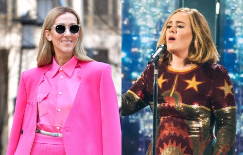 Adele owns a framed piece of Celine Dion's used chewing gum