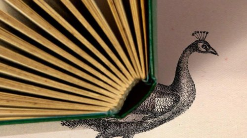 'The Liar's Dictionary' Is A Delight From A To Z