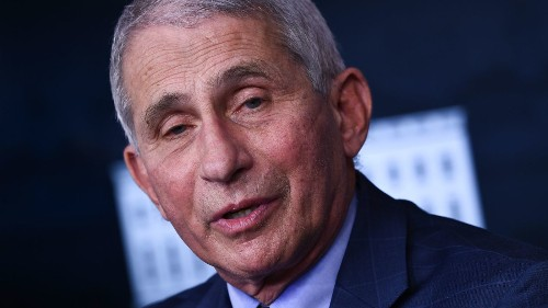 Fauci Predicts U.S. Could See Signs Of Herd Immunity By Late March Or Early April