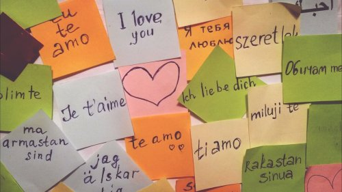 'I'm Willing To Fight For It': Learning A Second Language As An Adult