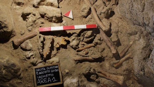 'Extraordinary Discovery': Archaeologists Find Neanderthal Remains In Cave Near Rome
