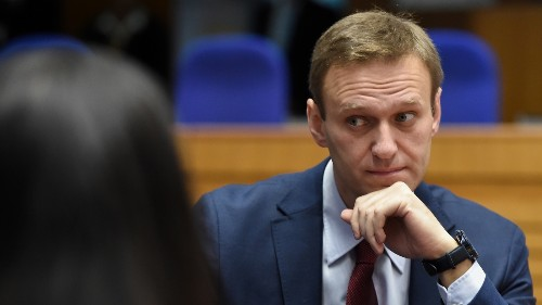 Kremlin Critic Alexei Navalny Detained After Returning To Russia Following Poisoning