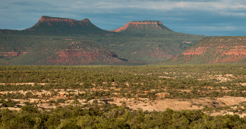 A Monumental Matter at Bears Ears—Land of Sacred Power