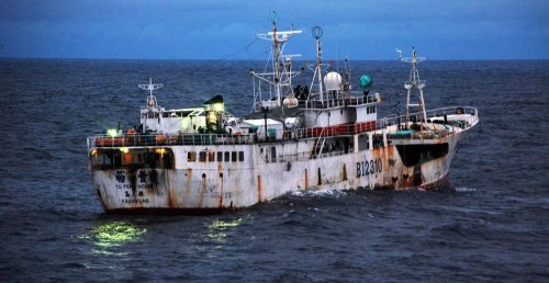 House Considers Important Illegal Fishing and Wildlife Trade Bills