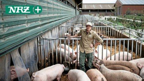 Schweinehalter zwischen Zukunftsängsten und Verantwortung