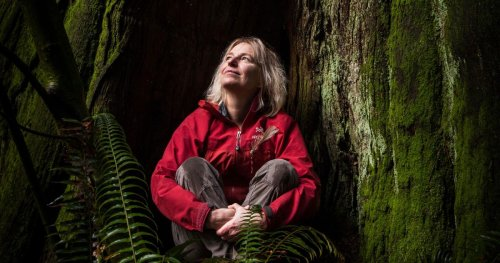Suzanne Simard Changed How the World Sees Trees