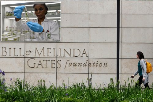 Everything you need to know about the Bill & Melinda Gates Foundation