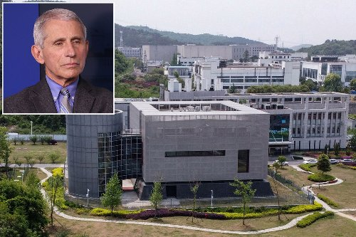 Fauci defends China, claims it's 'far out' COVID was created in a lab