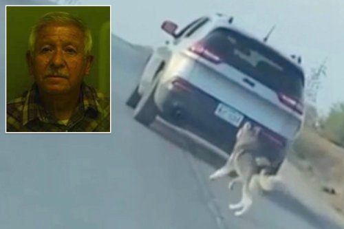 Texas man arrested for abandoning dog on side of the road